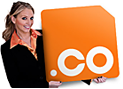 .co global domain names at cheap price